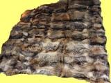 Marderhund-Decke in zwei Größen, Rarität